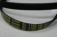 Ремень 1185 H8 EL приводной для стиральной машины Rainford Рейнфорд Megadyne