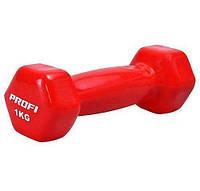 Гантели виниловые для фитнеса 2 шт по 1 кг