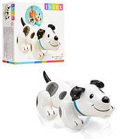 Детский надувной плотик Intex 57521, щенок