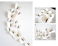Объемные 3D бабочки на стену (обои) для декора (белые)