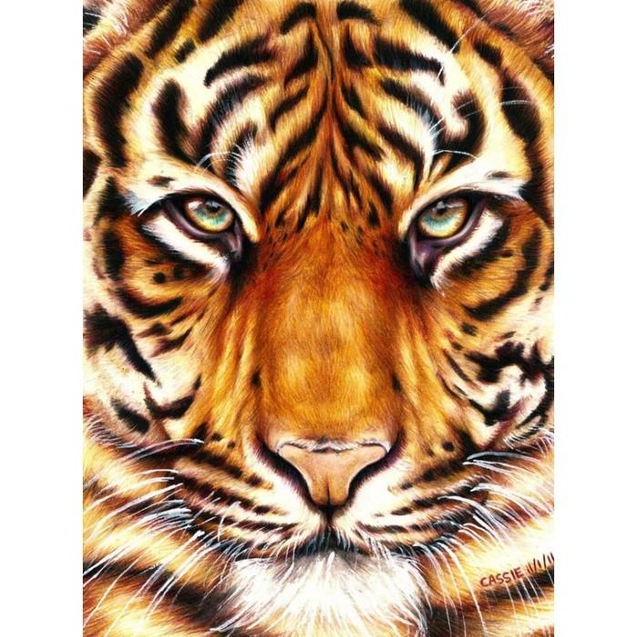 Картина по номерам Сила тигра без коробки