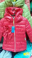 Весенняя детская курточка на лёгком синтепоне