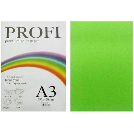 """Папір насичених тонів PROFI 230 (43199) зелений А3 120гр 250л """"Deep Parrot"""" насичений, фото 2"""