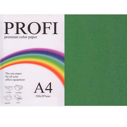 """Бумага насыщенных тонов PROFI 41А (36398) темно-зеленый А4 160гр 250л """"Intense Asparagus"""" насыщенный, фото 2"""