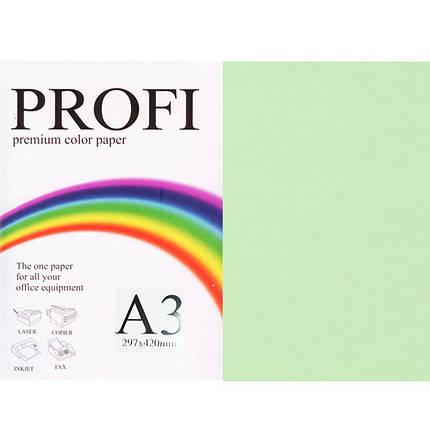 """Бумага пастельных тонов PROFI 130 (36381) светло-зеленый А3 80гр 500л """"Light Lagoon"""" пастельный, фото 2"""