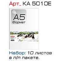 Картон цветной Графика КА5010Е бел А5 10л мелов в п/п пакете