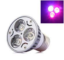 Светодиодные лампочки 220 Вольт