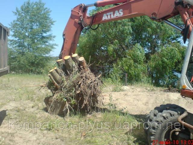Удаление пней, корчевание пней, вывоз веток, листьев (044) 466 59 42