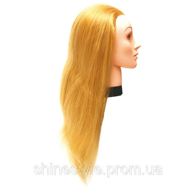 Учебная голова-манекен для парикмахеров 60 см + штатив eurostil 02545