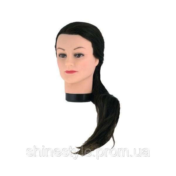 Тренировочный манекен для парикмахеров 60 см + штатив eurostil 01142