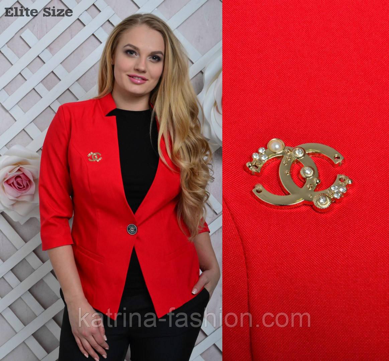 Женский стильный жакет больших размеров (4 цвета) - KATRINA FASHION - оптовый интернет-магазин женской одежды  в Харькове