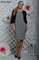 Женское красивое прямое трикотажное платье больших размеров (2 принта)