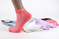 "Женские носки ""SPORT"" р. 36-42 (C420/600) | 600 пар"