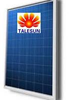 Солнечная панель TALESUN TP660P -260w