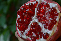 Курс по изготовлению фруктов и ягод из изомальта