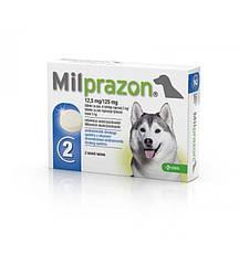 Милпразон - новий антигельмінтивний препарат з широким спектром дії для собак вагою 5-25кг