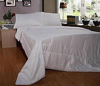 Одеяло с натуральным шелком 145х205см Word of Dream