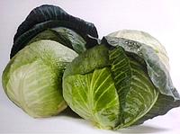 Семена капусты б/к Акварель F1, 2500 шт, Nunhems