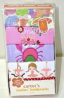 Набор бодиков Carters для девочек с длинным рукавом, возраст 6 месяцев
