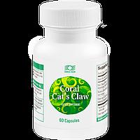 Кошачий коготь  Корал  -эффективный растительный комплекс для укрепления иммунитета и поддержания (60капсул)