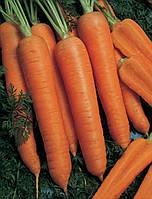 Семена моркови Наполи F1 Bejo 100 000 шт (1,6-1,8)