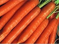 Семена моркови Брилианс F1 Nunhems 100 000 шт (1,4-1,6)