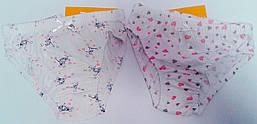 Трусики для девочек 110 см Кулир ТР3 Бэмби Украина