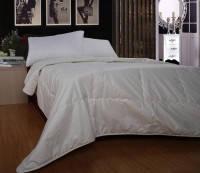 Одеяло с шерстью мериноса 145х205см Word of Dream