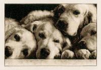 "Набор для вышивания крестом  Vervaco ""Labradors (Лабрадоры)"""