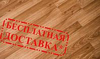 """Ламинат WinnPol 32 класс """"Дуб натуральный"""", 316 грн/пачка, 1,92 м.кв/пачка"""