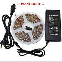 LED фитолента влагозащищенная - 500см., 300 светодиодов, с блоком питания 12В/5А.