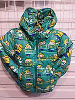 Детская куртка Minions Миньоны 92-116 см