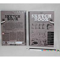 Набор SKETCH BOOK Курсы рисования с карандашами Danko toys SB-01-01