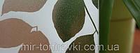 Пленка листья-искра