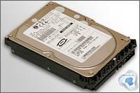 Fujitsu 147 GB 10000 RPM Ultra320 SCSI