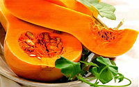 Семена тыквы Тиана F1, 500 шт, Enza Zaden
