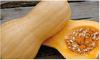 Семена тыквы Матильда F1, 500 шт, Enza Zaden