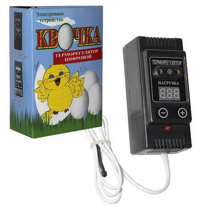 Цифровой терморегулятор Квочка для инкубатора., фото 2