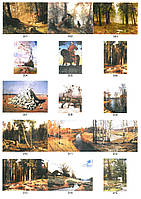 Картини під бурштин 5