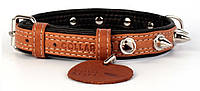 """Ошейник для собак """"CoLLaR SOFT"""" с шипами коричневый верх (ширина 35мм, длина 57-71см) (7224)"""