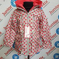 Детская весенняя куртка в горошек на девочку GRACE