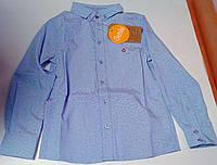 Рубашка для мальчиков Голубая 116 см 19069013041 РБ69 Бэмби Украина