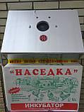 Инкубатор Наседка 100 (мех перев, металл корпус), фото 6