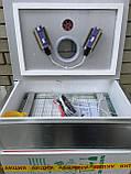 Инкубатор Наседка 100 (мех перев, металл корпус), фото 2