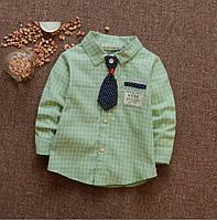Рубашка детская  с галстуком для мальчика