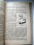 """Е.Цоппи """"Работа сестры в детских учреждениях"""". 1948 год. 79 иллюстраций!!!, фото 6"""