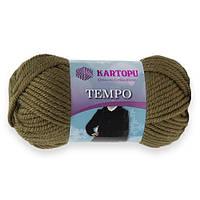 Kartopu Tempo темная оливка № 395