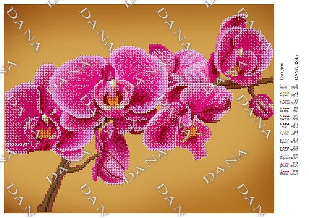 Схема для вышивки Орхидея