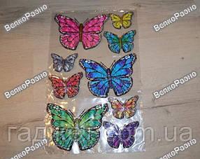 Бабочки 3D двойные,разноцветные. Декор для стен.