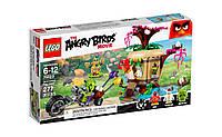 LEGO  Angry Birds  КРАЖА ЯИЦ С ПТИЧЬЕГО ОСТРОВА 75823